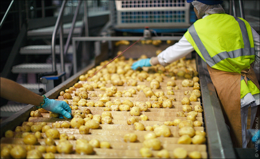 Frito-Lay Goes Green: Companies Discover Benefits Beyond Helping The Environment (PHOTOS)